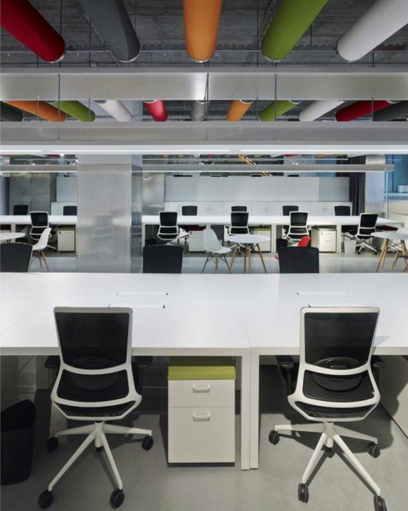 Oficinas Vivero Papagayo 5